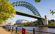 Tyne Bridge & Sage